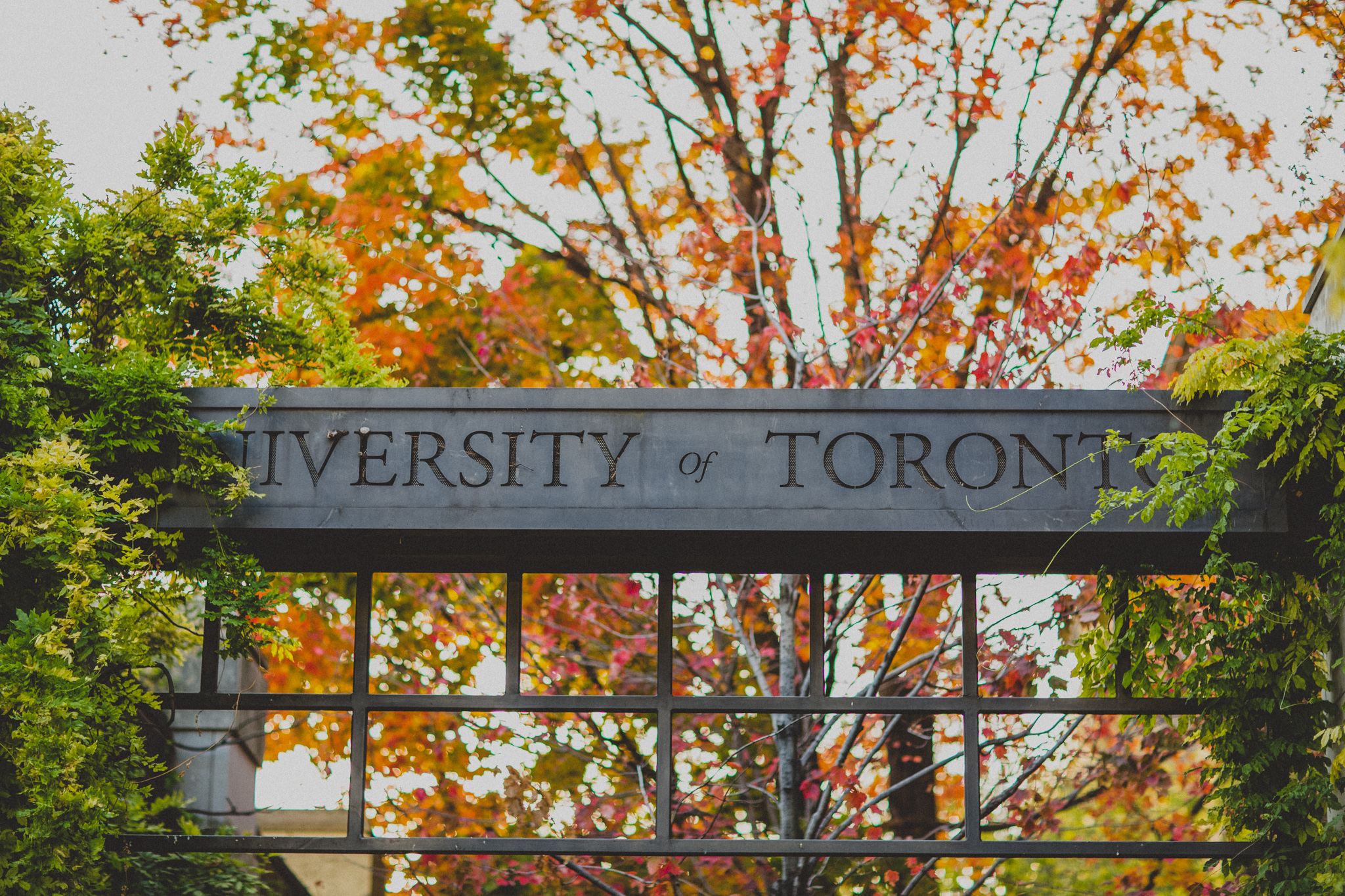 University of toronto admissions open times consultant for Chair in engineering design university of toronto